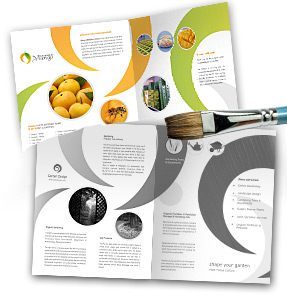 Trifold Brochure Templates Customization