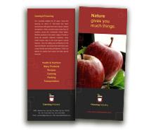Brochure Templates canning  food
