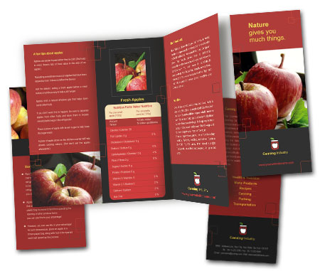 complete brochure view with