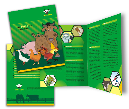 Complete Brochure  View with Layout For Cattle Farming