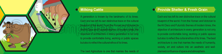 Actual Brochure  Design For Cattle Farming
