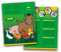 Brochure Templates cattle farming