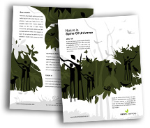 Brochure Templates Nature Rainforests