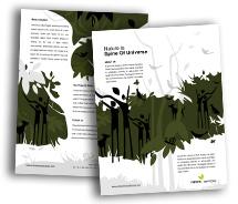 Brochure Templates rainforests