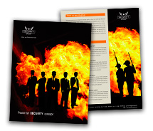 Security Fire Security System brochure-templates