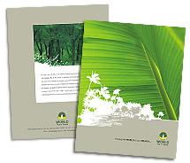 Brochure Templates travel holiday