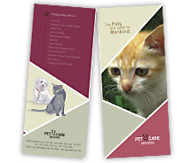 Animal & Pets Pet Care Services brochure-templates