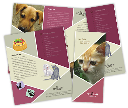 Complete Brochure  View with Layout For Pet Care Services