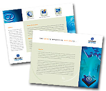 Brochure Templates Hosting Internet Access Service