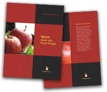 Brochure Templates Food Canning  Food