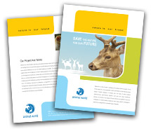 Brochure Templates Animal & Pets Wild Life Parks