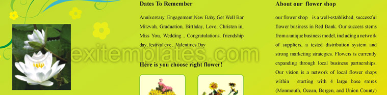 Actual Brochure  Design For Florists